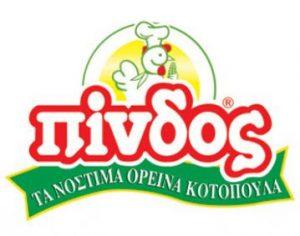 Πίνδος logo